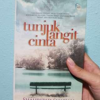 Malay Novel Tunjuk Langit Cinta