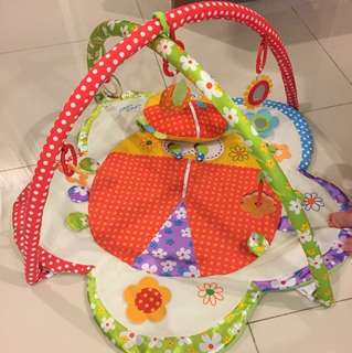 Flower Ladybird Baby Playgym