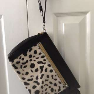 Coach bag/ large wristlet