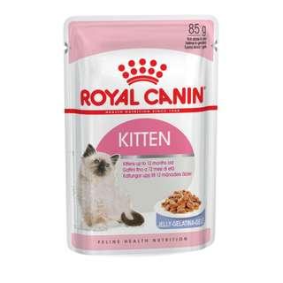 Free umbrella! Royal Canin Kitten Jelly Cat Pouches 85g x 12