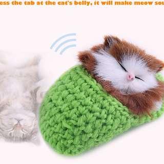 SIMULATION SOUNDING SLEEPING CAT WITH SLIPPER NEST GIFT