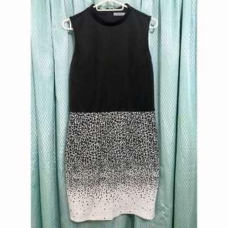 Black Sheep Sleeveless Dress