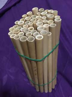 Bamboo (homemade) / Stainless Steel Straw