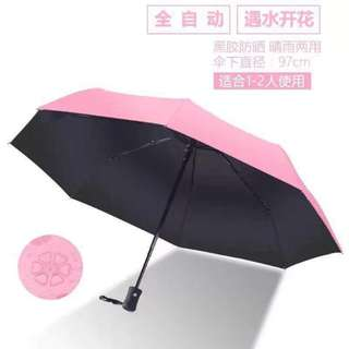 Magic umbrella