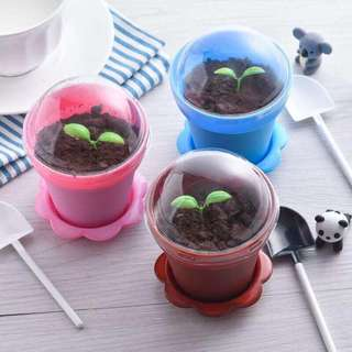 Chocolate Flower Pot 花盆巧克力🍀