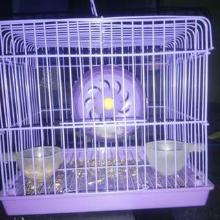 Hamster Cage and with one Hamster