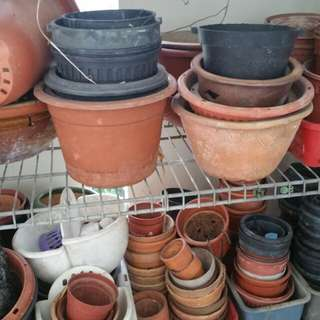 Plant pots in various sizes