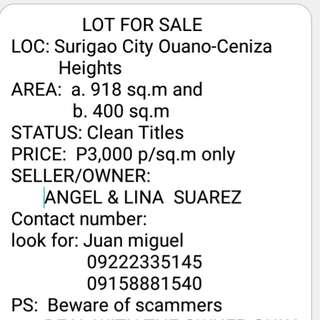 Two Titled Residential Lot in Ceniza Heights Subd