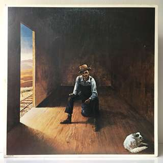 Don McLean – Homeless Brother (1974 USA Original in Gatefold Sleeve - Vinyl is Mint)