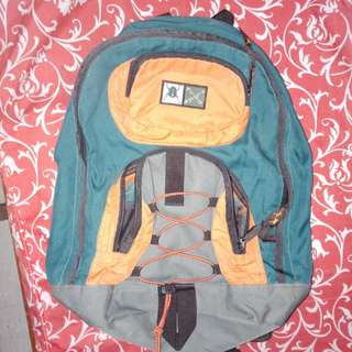 Frog Sport Bagpack