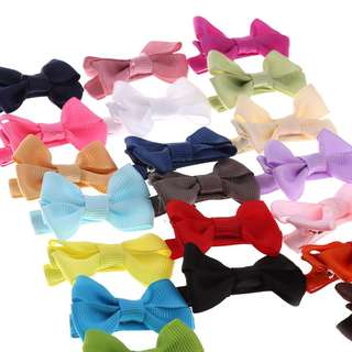 20pcs assorted hair clip