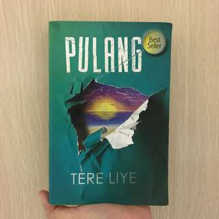 Novel Pulang by Tere Liye