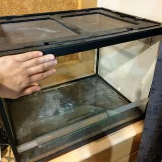 玻璃缸 爬蟲類佳