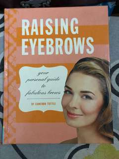 Raising Eyebrows by benefit book