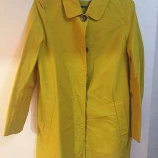 日牌 yellow coat