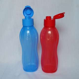 Tupperware Brands Eco Bottle (2) 1L
