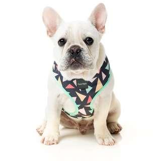 FuzzYard Rad Dog Harness