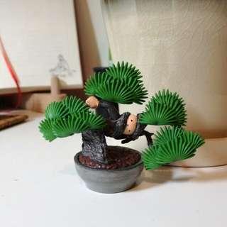 黑松 · 盆惱扭蛋(日本盆栽扭蛋)