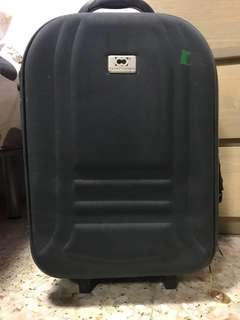 Luggage, Green, Cabin size