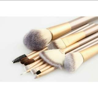 Brush 12set