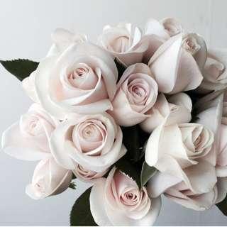 Roses China - Cream