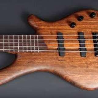 Mayones 5 string Bass - Urgent Sale