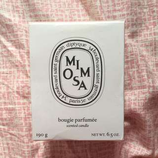 Diptyque Mimosa Scented Candles