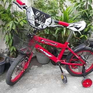 The Flash Bike