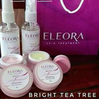 Eleora Skincare Treatment