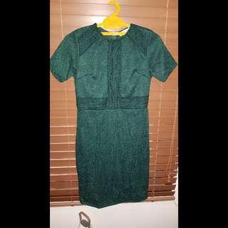Green dress (stretchable)