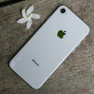 Kredit Iphone 8 64 Silver New Garansi Internasional