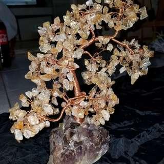 黄晶樹,水晶樹,老香港懷舊物品
