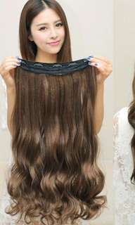 Hairclip Extensions (Inc Postage)