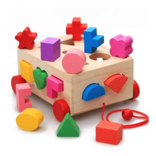 Wooden Box Shape Sorter Pull/Tag Along Toy