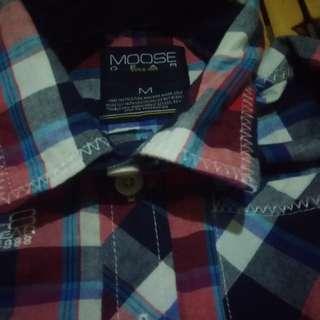 Polo checkered long sleeves
