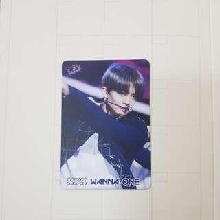 Wanna one BAE JINYOUNG 裴珍映 YES CARD