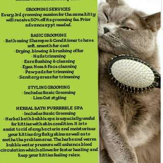 Cat Grooming Services- Basic/Styling/Treatment