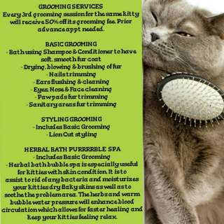 Cat Grooming - Basic/Styling/Treatment