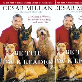 Be the Pack Leader: Use Cesar's Way to Transform Your Dog . . . and Your Life by Cesar Millan