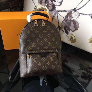Louis Vuitton Palm Springs in PM size
