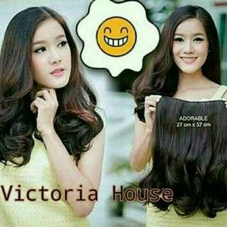 Hair extension / hair clip