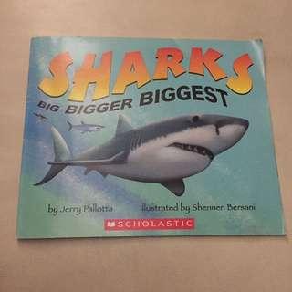 Sharks big bigger biggest
