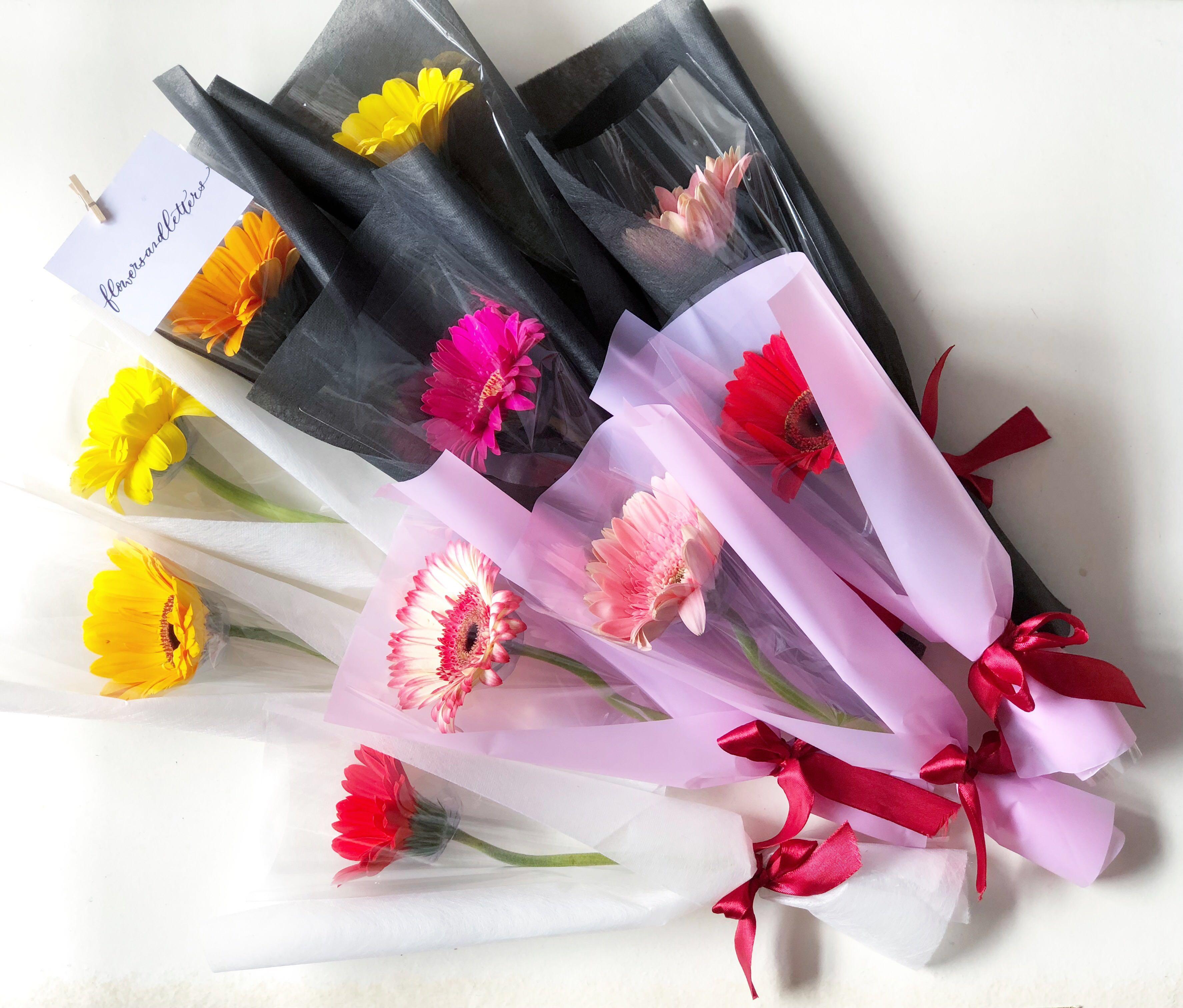 Gerbera daisy fresh flower bouquet real flowers single stalk or ...