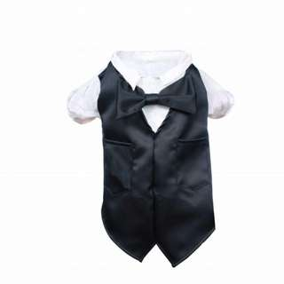 SOLD* 🐶Pet suit up !