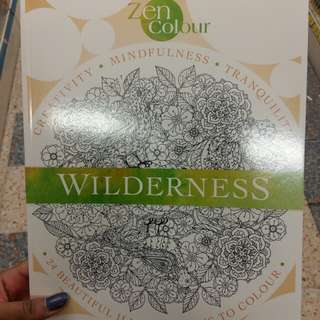 Wilderness Colouring Book