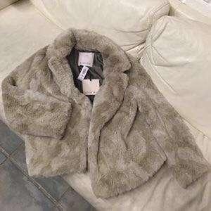 Aritzia Mortimer coat