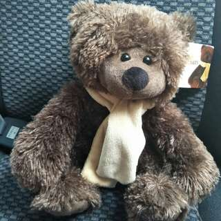 Brand New Teddy Bear