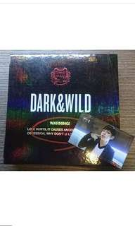 BTS dark and wild