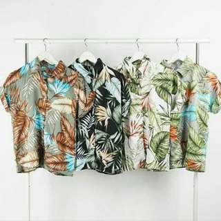 Faleno Shirt