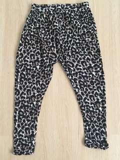 Animal Print Harem Pants